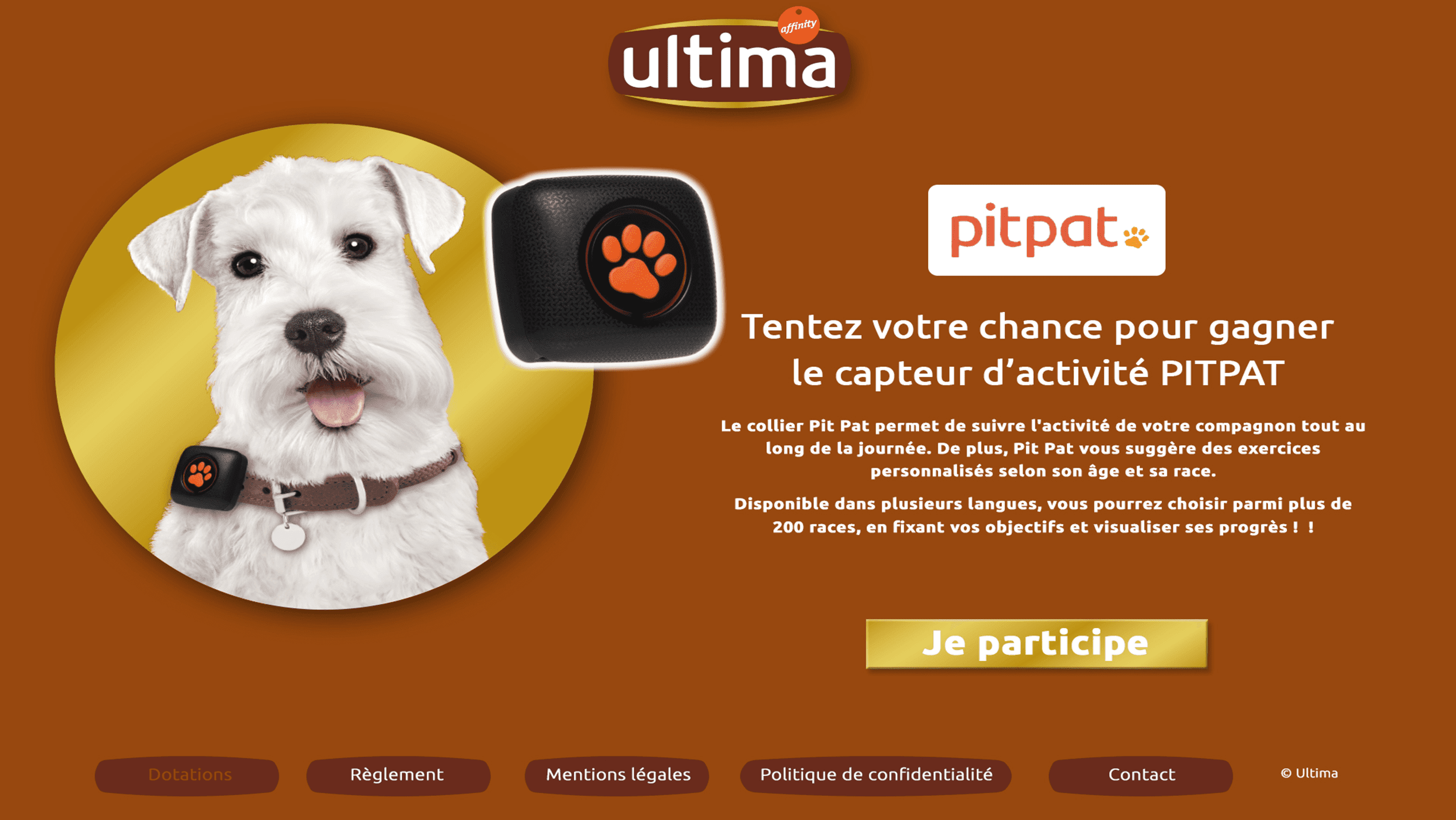 Ultima Chat page dotation